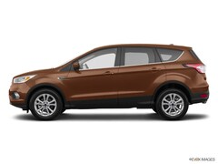 New 2017 Ford Escape SE SUV 17158 in Grand Haven, MI
