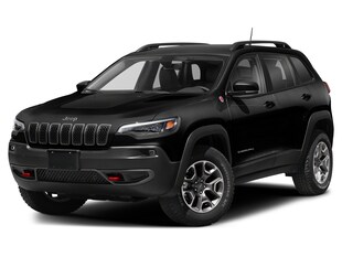 2021 Jeep Cherokee Trailhawk Elite 4x4 Sport Utility 1C4PJMBX8MD133746