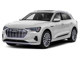 2019 Audi e-Tron Progressiv Quattro SUV