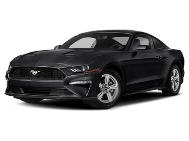 2019 Ford Mustang ECOBOOST 101A 6-SPEED EcoBoost Fastback