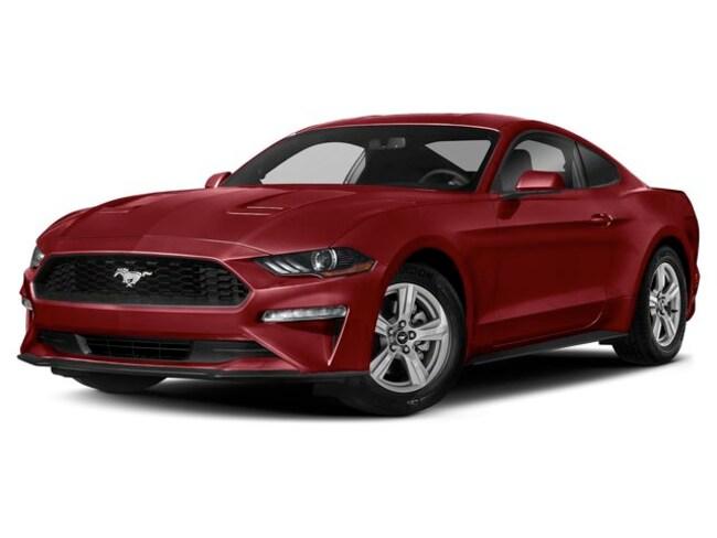 2019 Ford Mustang I4 Car