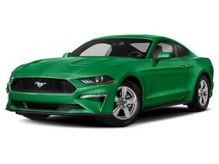 2019 Ford Mustang GT Coupe [12A, 99F, AJ, 41H, 153, 693, 1, 2, T31, 77S, 455, 43S, 66W, 44X, 300A, 19B, 85X, 47A] 4V TI-VCT V8 Engine