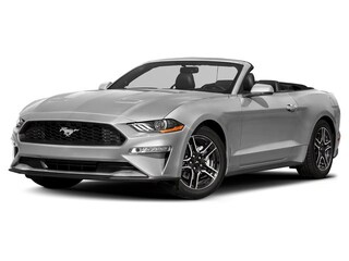 2019 Ford Mustang Ecoboost 2.3L 101A Convertible