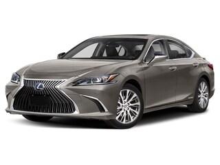 2020 LEXUS ES 300h Premium Ecvt Sedan