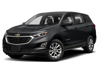 2020 Chevrolet Equinox LS Sport Utility for sale in Vancouver, BC