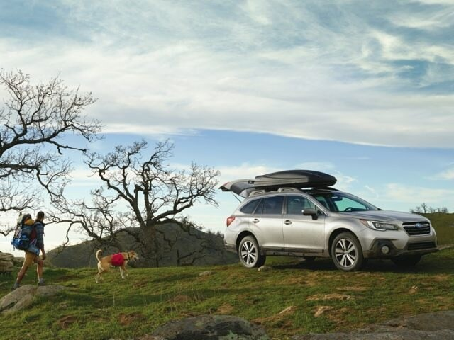 Man and Dog returning to their 2018 Subaru Outback