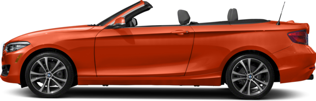 2019 BMW 230i Convertible xDrive