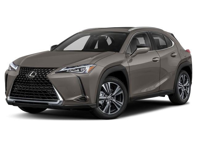 2019 Lexus UX in Charleston