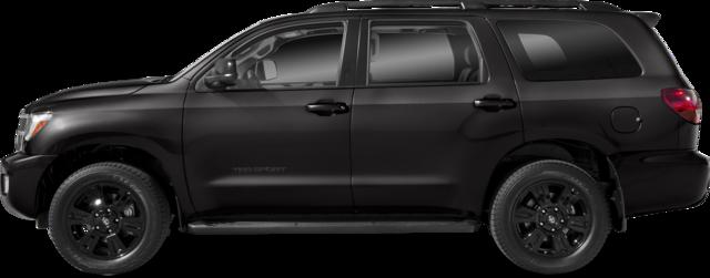 2019 Toyota Sequoia SUV TRD Sport