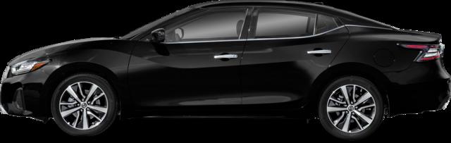 Nissan Maxima Sedan 3.5 SL