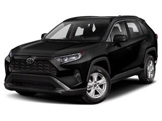 Used 2019 Toyota RAV4 XLE SUV Peoria, AZ