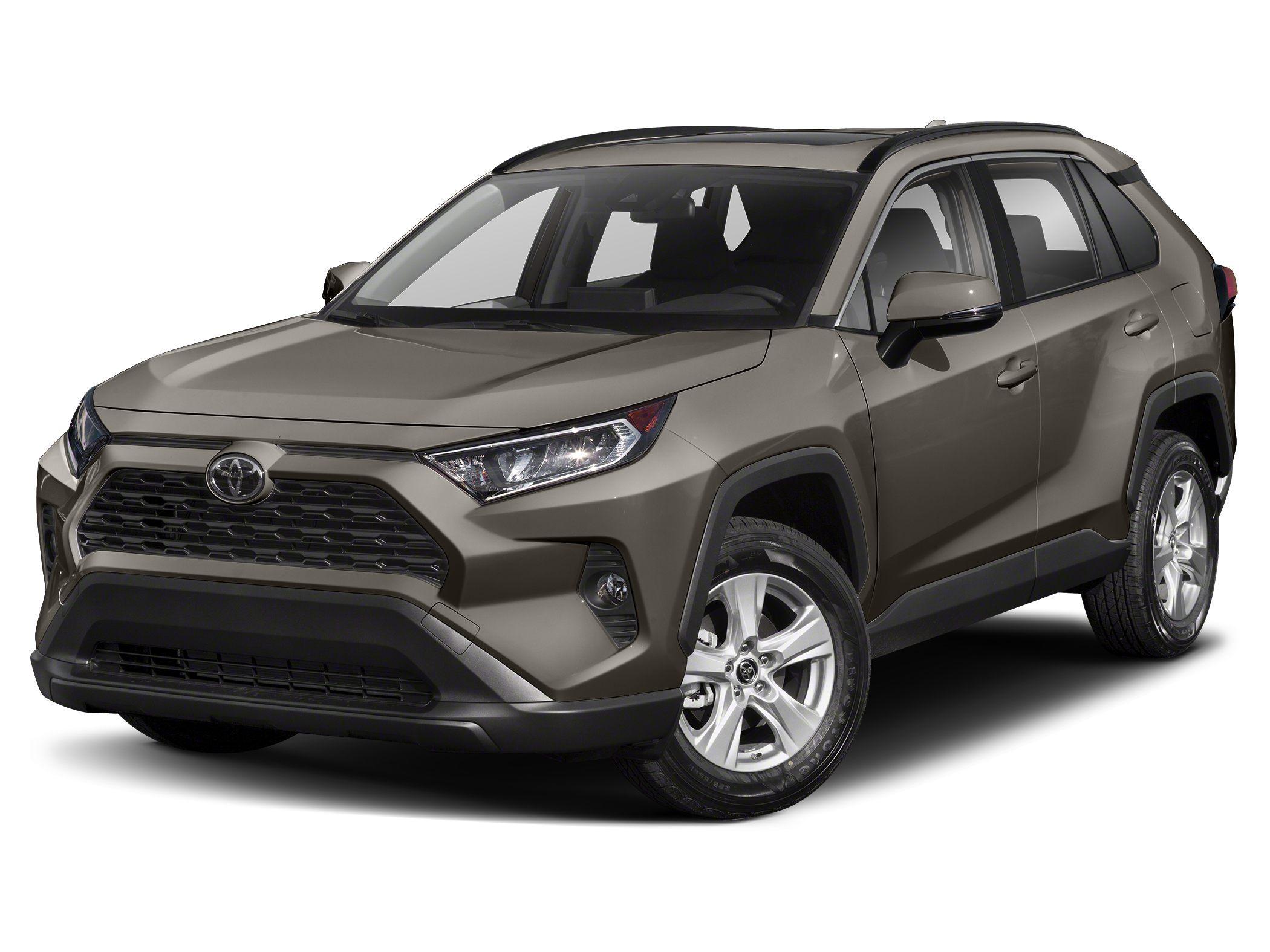 Certified 2019 Toyota RAV4 XLE Premium with VIN JTMA1RFV2KJ007621 for sale in Maplewood, Minnesota