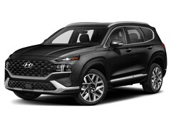 New 2021 Hyundai Santa Fe Calligraphy SUV 5NMS5DAL1MH317561 for Sale in St Paul, MN at Buerkle Hyundai