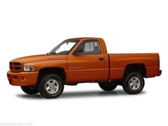 2001 Dodge Ram 1500 Truck Regular Cab
