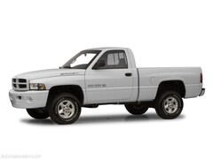 2001 Dodge Ram 1500 Truck Regular Cab