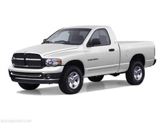 Bargain 2002 Dodge Ram 1500 ST Regular Cab ST LB for sale in Pocomoke, MD
