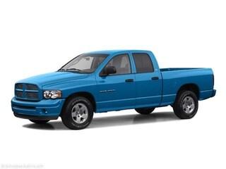 2002 Dodge Ram 1500 Truck
