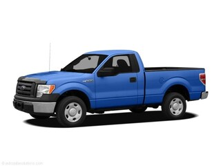 Used 2010 Ford F-150 Truck for sale in Martinsburg, WV
