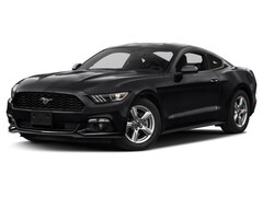 Used Vehicles for sale  2016 Ford Mustang Ecoboost Coupe in Newark, CA