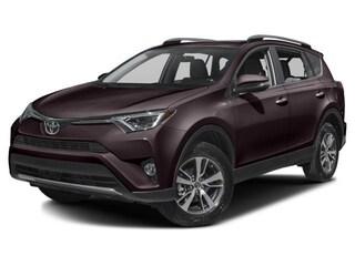New 2018 Toyota RAV4 XLE SUV in Winchester, VA