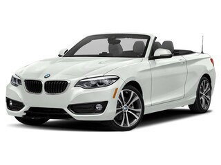 new 2019 BMW 230i xDrive Convertible for sale near Worcester