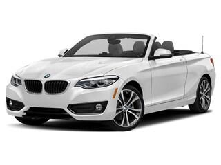 2019 BMW 230i xDrive Convertible ann arbor mi