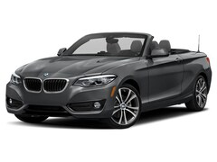 New 2019 BMW 230i xDrive Convertible 28251 in Doylestown, PA