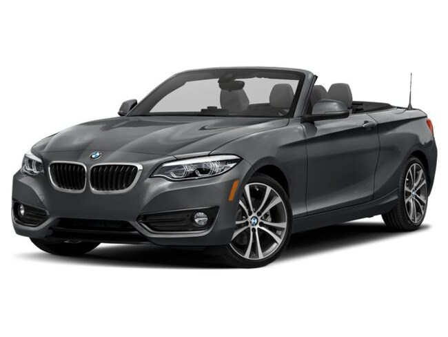 New 2019 BMW 230i xDrive Convertible Doylestown