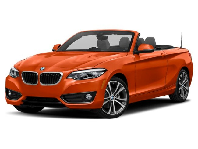 New 2019 BMW 230i xDrive Convertible in Doylestown, PA