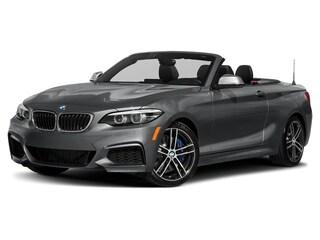 2019 BMW 2 Series Convertible in Minnetonka, MN