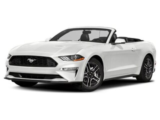 New 2019 Ford Mustang GT Premium Convertible in Shelby, OH