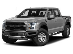 2019 Ford F-150 Raptor Truck 1FTFW1RG5KFA43098 for sale in Sheffield Village, OH at Mike Bass Ford