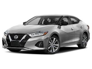 2019 Nissan Maxima 3.5 SV Sedan 1N4AA6AV2KC366435 15606N