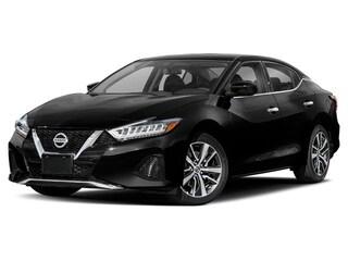 New 2019 Nissan Maxima 3.5 SL Sedan for sale in Aurora, CO