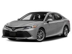 2019 Toyota Camry XLE V6 Sedan