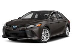 2019 Toyota Camry Hybrid Hybrid XLE Sedan
