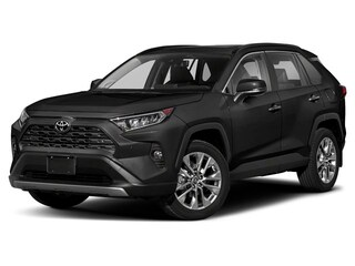 New 2019 Toyota RAV4 Limited SUV Albuquerque