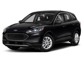 New 2020 Ford Escape SE SUV for sale near you in Braintree, MA