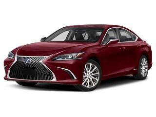 2020 LEXUS ES 300h Luxury Sedan