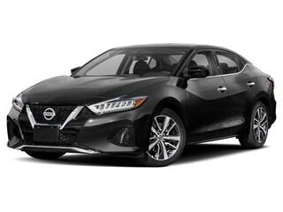 New 2020 Nissan Maxima 3.5 SL SL 3.5L for sale near you in Centennial, CO