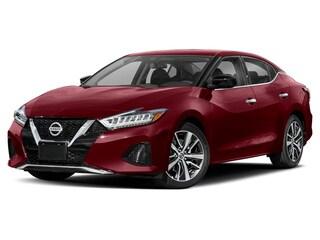 New 2020 Nissan Maxima 3.5 SL Sedan M7033 for sale near Cortland, NY