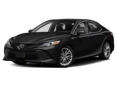 New 2020 Toyota Camry XLE Sedan