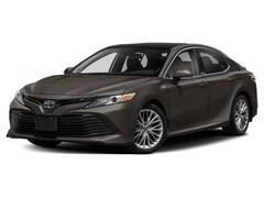 New 2020 Toyota Camry XLE V6 Sedan