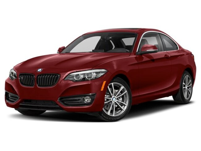 certified used 2019 BMW 230i xDrive Coupe shelby township MI