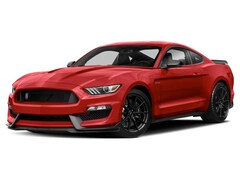 New 2019 Ford Shelby GT350 Coupe in Comstock, NY