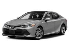 New 2019 Toyota Camry XLE Sedan in Easton, MD