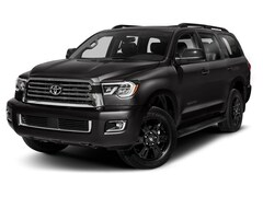 2019 Toyota Sequoia TRD Sport SUV 5TDBY5G10KS170825
