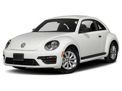 2019 Volkswagen Beetle 2.0T S Car