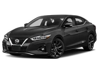 new 2020 Nissan Maxima 3.5 SR Sedan 1N4AA6EV7LC366376 for sale in Lakewood CO