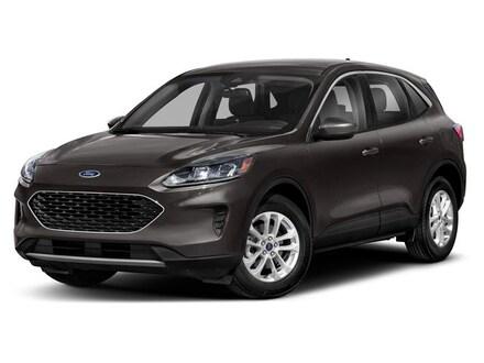 New 2021 Ford Escape SE SUV for sale near Grand Ledge MI